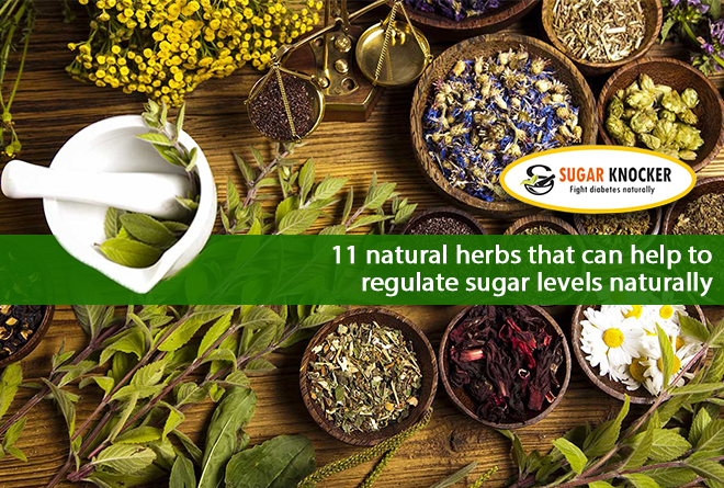 11 Natural Herbs that can help to Regulate Sugar Levels Naturally