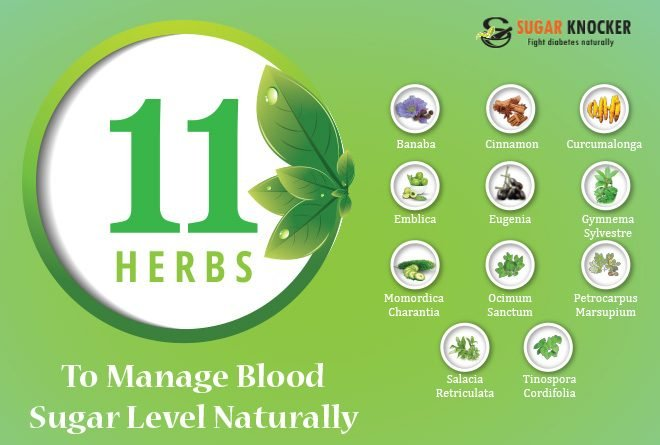 11 Herbs to Manage Blood Sugar Level Naturally