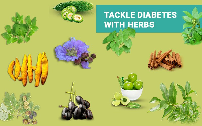 Tackle Diabetes with Herbs