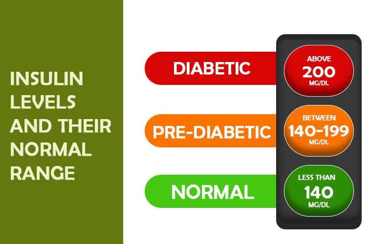 Insulin Levels and Their Normal Range