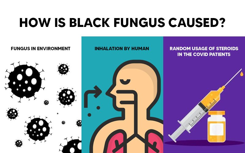 How is Black Fungus Caused?