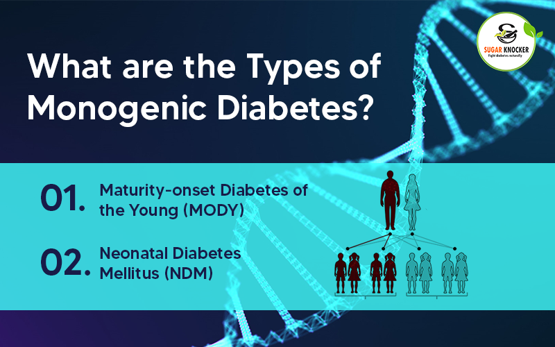 What are the Types of Monogenic Diabetes?